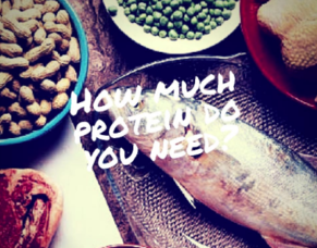 How much protein do you really need?